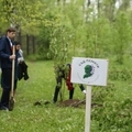 Сад Памяти в школе